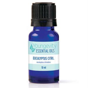 Picture of Eucalyptus Citriodora Essential Oil - 10ml